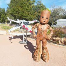 Costume - Baby - Groot - Marseille